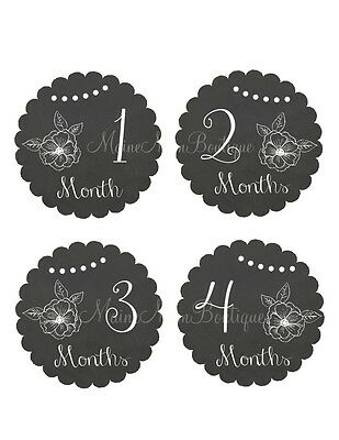 Baby Girl Month Stickers Milestone Bodysuit Monthly Photo GIFT Chalkboard Floral