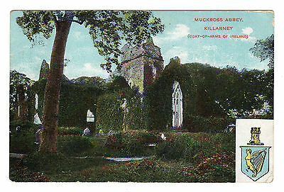 Muckross Abbey - Killarney Photo Postcard 1905