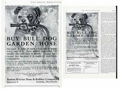 BULL DOG Garden Hose Ad - 1917 - Bull Dog with Hose in Mouth