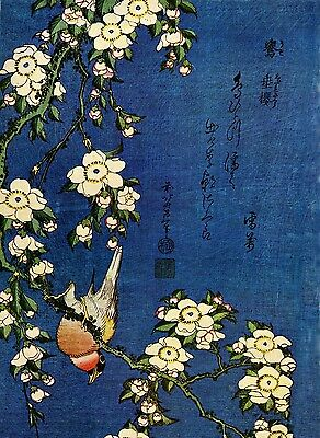 Japanese Print by 'Unknown Artist'