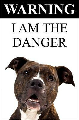 "Warning I Am The Danger ""Staffy"" Metal Dog Sign Available In 4 Sizes"