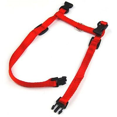 Kitten Cat Outdoor Harness & Lead Strap Adjustable Strong New - By DIGIFLEX