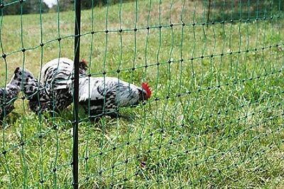 Turkey Net without Electricity Chicken Fence Poultry