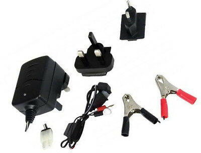 6V/12V Motorcycle Battery Trickle Charger  With Auto Cut Off