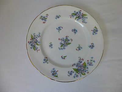 Tuscan,FORGET-ME-NOT, Bone China, Salad Plate, D233