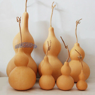 Feng Shui Lucky Natural Gourd Calabash Exorcism Blessing Home Decor Hanging New