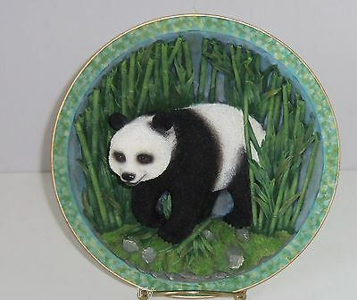 Panda Bear Giant Collector Plate 3D Gray Rock Amy Addy