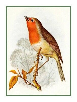 Naturalist  Archibald Thorburn Robin Red Breast Bird Counted Cross Stitch Chart