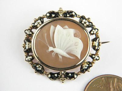 ANTIQUE 15K GOLD ENAMEL FINELY CARVED PSYCHE BUTTERFLY SHELL CAMEO BROOCH c1830