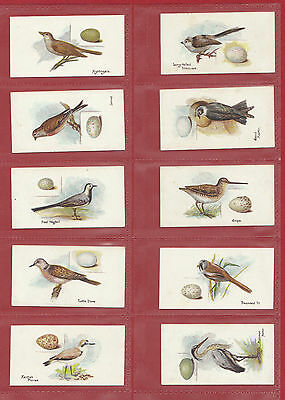 Lambert  &  Butler  -  Rare  Set  Of  50  Birds  &  Eggs  Cards  -  1906