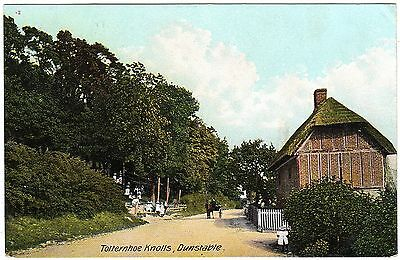 Postcard Girls In The Trees-House-Totternhoe Knolls-Dunstable-Bedfordshire 1912