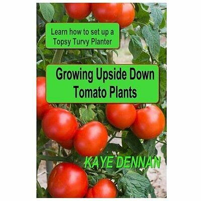 Growing Upside Down Tomato Plants: Learn How to Set Up a Topsy Turvy Planter - D