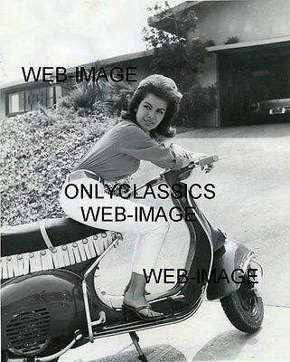 1962 SEXY COOL ANNETTE FUNICELLO VESPA MOTOR SCOOTER ITALIAN MOTORCYCLE PHOTO