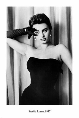 Poster in 3 Sizes Celebrity Photo Actress Sophia Loren 19