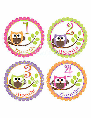 Monthly Bodysuit Age Photo Prop Stickers Baby Girl Gift OWLS Shower Gift Decor