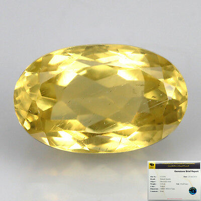 2.20 Ct NATURAL AMAZING BIG SIZE AFRICA YELLOW APATITE OVAL GEMSTONE VDO