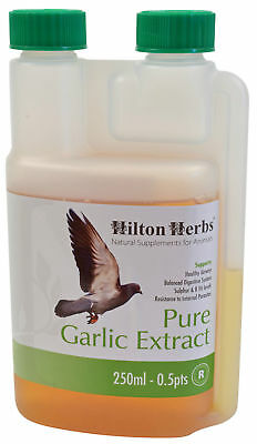 HILTON HERBS PURE GARLIC EXTRACT JUICE poultry birds pigeon health immunity