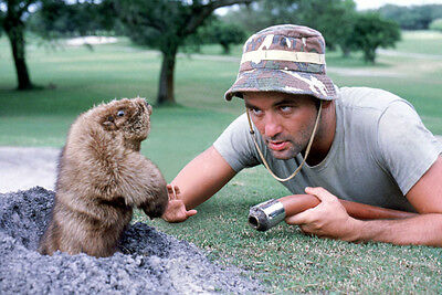 Bill Murray Caddyshack 8X10 Glossy Photo Picture
