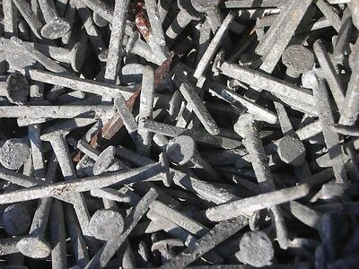 1,000 LABELLE OLD ANTIQUE VINTAGE SQUARE CUT SHINGLE NAILS GALVANIZED 1-1/2 x 4D