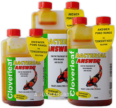 Cloverleaf Bacterial Answer Koi Goldfish Wounds Ulcer Infections Pond Treatment