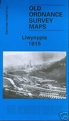 Old Ordnance Survey Map Llwynypia 1915