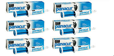 6 TUBES LOT PANACUR EQUINE PASTE 10% Fenbendazole Horse Wormer 1000lbs Per Tube