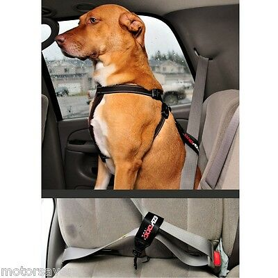 EZYDOG Loop Seat Belt Restraint For All Cars FREE DELIVERY !