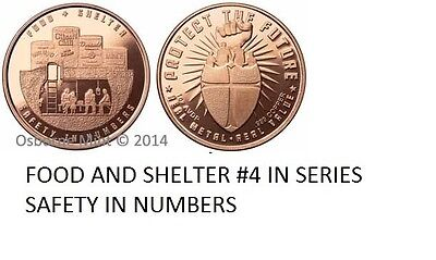 10-1 Oz Copper Coins *food And Shelter* Safety In Numbers 2Nd Amendment 1-20-100