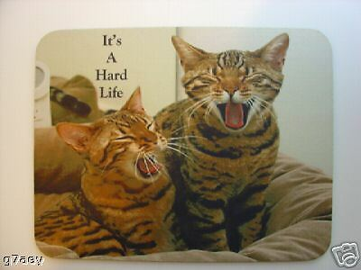2 Bengal Cats ( Brown Spot ) Mouse Mat ,Its A Hard Life