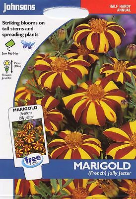 Johnsons Pictorial Pack - Flower - Marigold (French) Jolly Jester - 75 Seeds