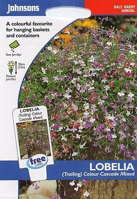Johnsons - Flower Lobelia (Trailing) Colour Cascade Mixed - 1500 Seeds