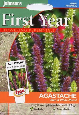 Johnsons - Pictorial Pack - Flower - Agastache Blue & White Mixed - 200 Seeds
