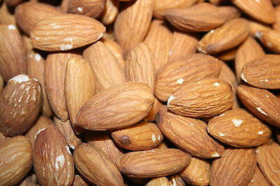 5 Pounds Whole Raw California Almonds Bulk Box 5lbs!!