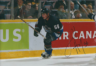 Darrell HAY Sheffield Steelers Ice Hockey Signed Autograph Photo AFTAL COA