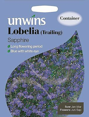 Unwins Pictorial Packet - Flower - Lobelia Trailing Sapphire - 1000 Seeds