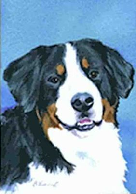 NICE! Artwork Design BERNESE MOUNTAIN DOG Garden Flag