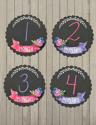 Baby Girl Month Milestone Monthly Stickers Floral Watercolor  Nursery Sticker