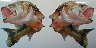 Bass Fish Mirrored Set -  Stickers  - Humor -  Must Have -  Sticker