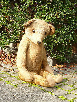 LARGE OLD ANTIQUE TEDDY BEAR EARLY 1900s  LARGE HUMP BOOT BUTTON EYES