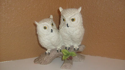 Vintage Set of White Owls on Branch by Andrea by Sadek #9340