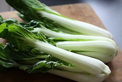 Rare Seeds Chinese Cabbage Pak - Choi Organically Grown Heirloom Vegetable