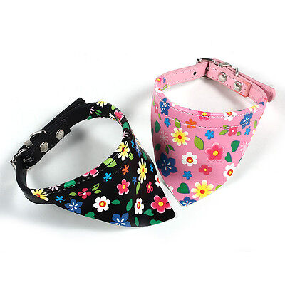 2 X Cat Kitty Kitten Neck Ring Safety Collar with Bell Blue Fuchsia Cute Glisten