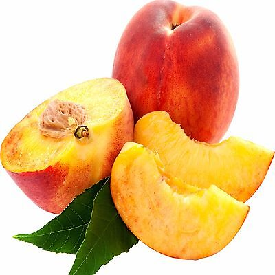 JUICY PEACHES Fragrance Oils Candle/Soap Making, Oil Burners, Diffusers