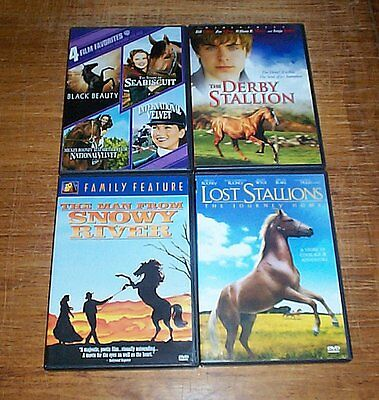 9 DVD Horse Film Title Collection / Lot (DVD) 12 films total on 11 DVD's