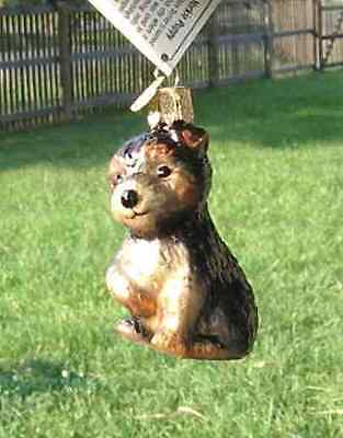 Old World Christmas YORKSHIRE TERRIER PUPPY Blown Glass Ornament OVERSTOCK SALE