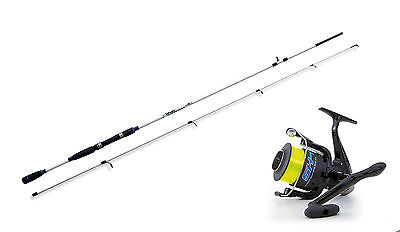 Lineaeffe Saltwater spinning rod &  SK1 40FD Reel combo Choose from 4 sizes.