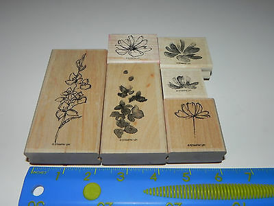 Stampin Up Fast & Fabulous Stamp Set of 6 Flowers Floral - Used