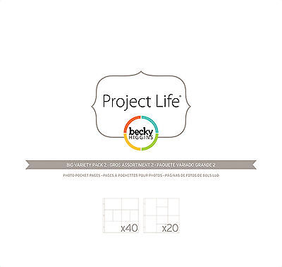 PROJECT LIFE 12x12 POCKET PAGES-BIG Variety 60-Pk #2 scrapbooking 380002