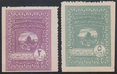 AFGHANISTAN 1920 REVENUES ESSAYS 2pi & 5pi PERF AT SIDES UNUSED VF MOSQUE