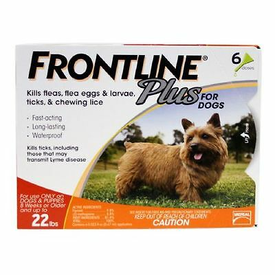 Frontline Plus Dog up to 22 lbs 6 ea